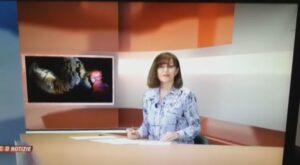 VCOazzuraTV Tv service about gold mine exploration